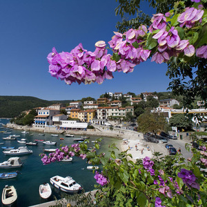 139_gallery_rabac-3